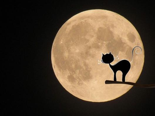 moon-969978_960_720