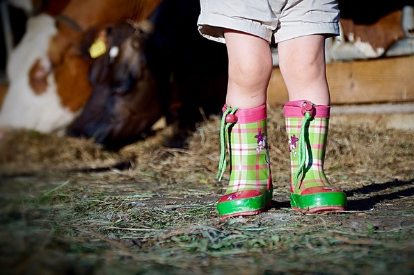 boots-2405036_960_720