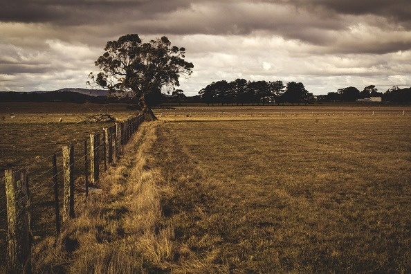countryside-918722_960_720