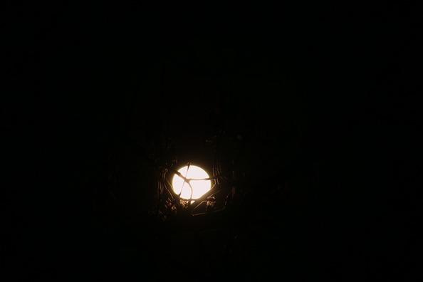 moon-1118733_960_720