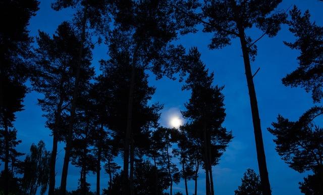 moon-3809634_960_720
