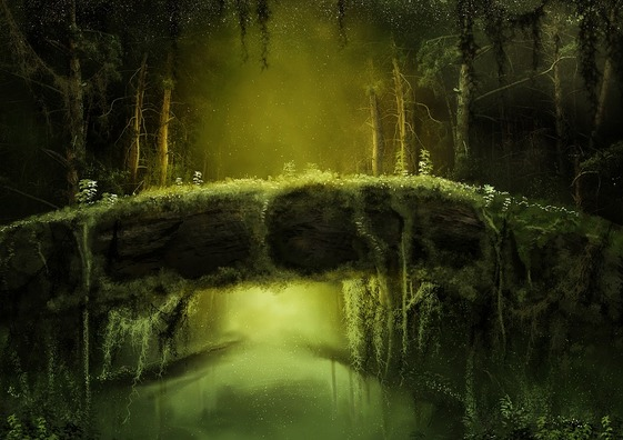 forest-3426921_960_720