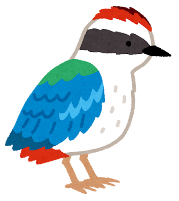 bird_yairochou