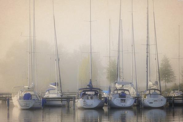 fog-2886563_960_720