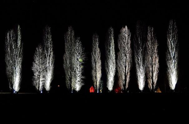 trees-1882070_960_720