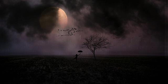 moonlight-3061068_960_720