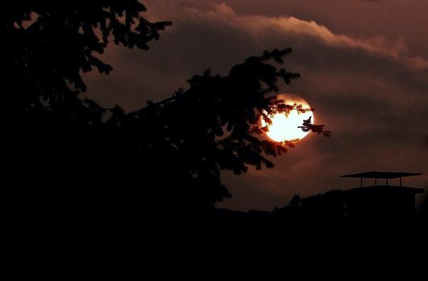moon-437762_960_720