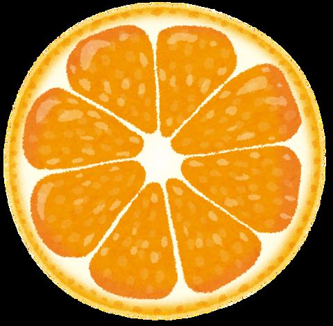cut_fruit_orange