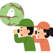 bird_watching