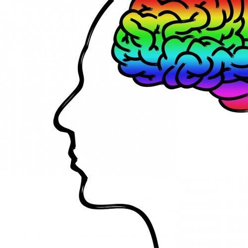 記憶力がいい=頭いいってことにはならないよな?