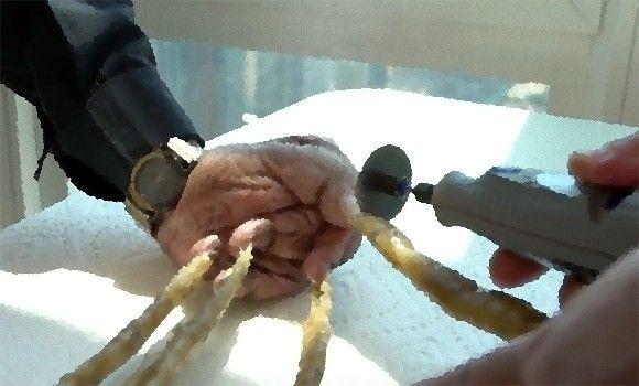 一番長い爪で2メートル近く!「世界で最も長い片手の爪」を持つ男性、66年ぶりに爪切り(長爪注意)