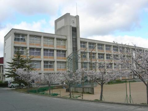 hasamachu