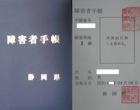 20111220120918afa