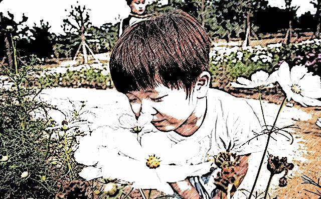 花と男の子