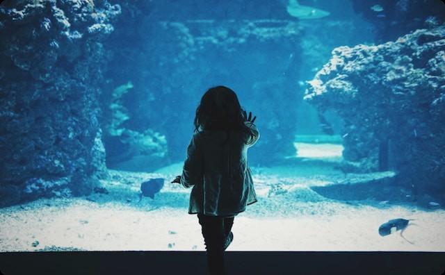 水族館の女の子