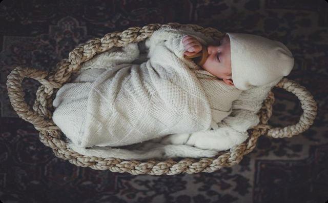 バスケットの赤ちゃん