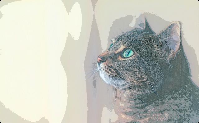 結婚した時、嫁「これからどうぞよろしくw」猫「にゃー(こいつ格下決定」→ 猫が嫁いびり開始 → その猫が天寿を全うすると、なんと…