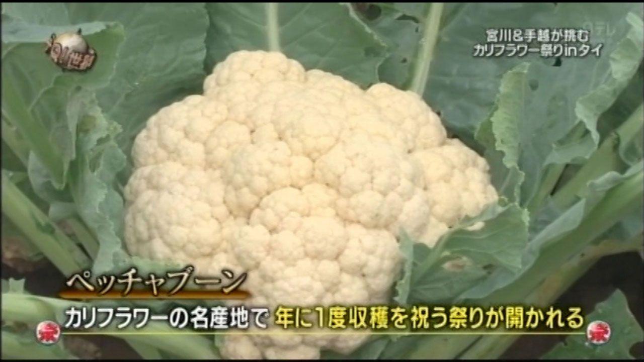 【文春砲】日本テレビ「世界の果てまでイッテQ!」、カリフラワー祭りも捏造だった