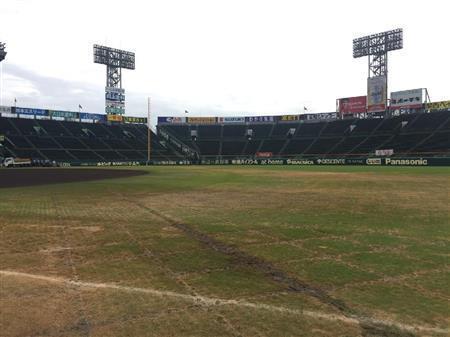 【悲報】水樹奈々コンサート後の阪神甲子園球場の芝が・・・【ネットの反応】