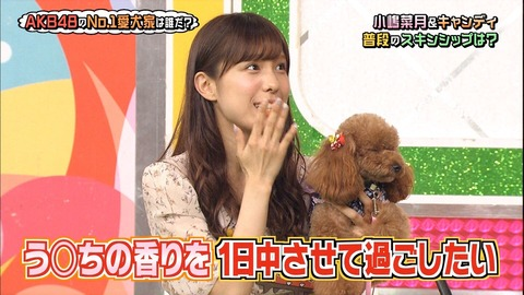【 AKBINGO 】 小嶋菜月 「 うんち大好き! 彼氏のなら顔に付けて1日過ごせる。」