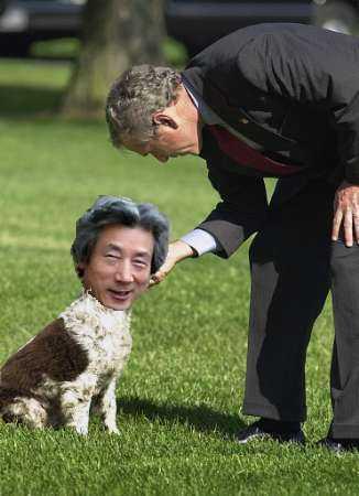 小泉純一郎 ブッシュの犬