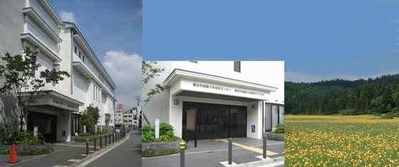 横浜f・マリノス 監督