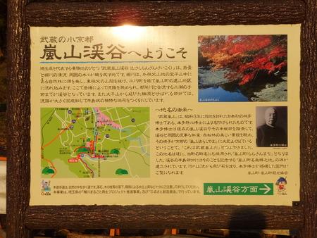 嵐山渓谷6