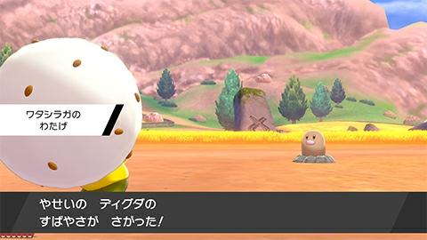 pokemon_190605_06_04