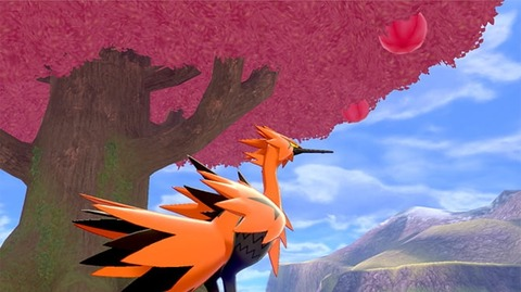 pokemon-200602_04_02