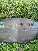 1115a813.jpg