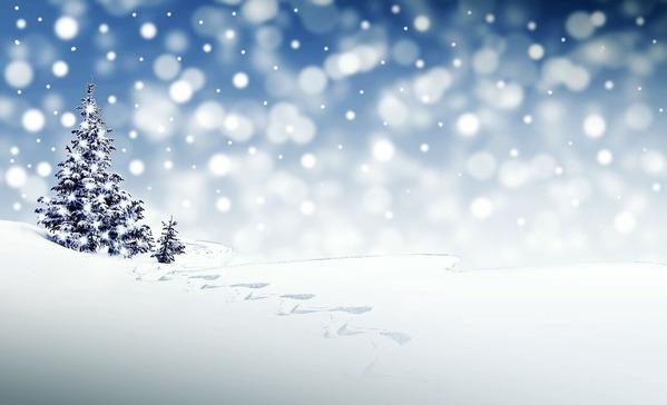 christmas-自然のツリー雪景色