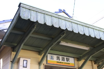 umamichi-002