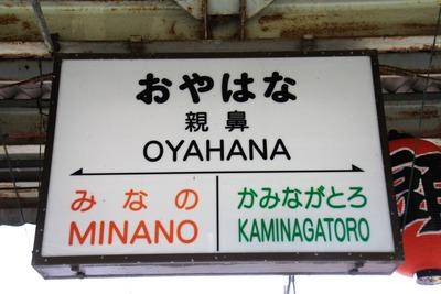 oyahana-010
