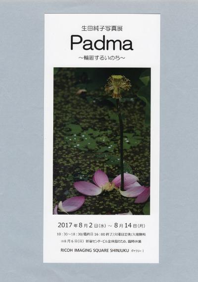 生田純子展DM (450x640)