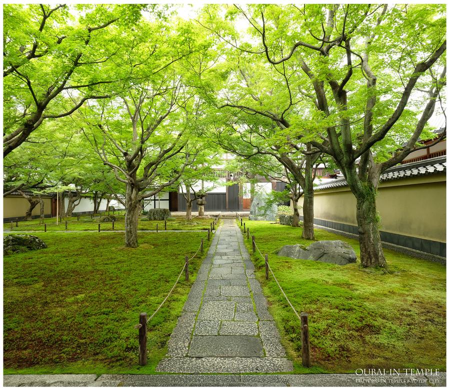 2019071306-大徳寺黄梅院院パノラマ-3000