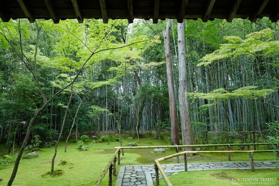 2019071304-大徳寺高桐院-3000-DSCF9669