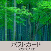 アイコン-800-800(ポストカード)-A