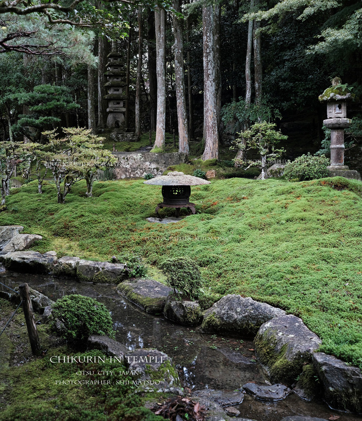 A1000-2021101248-坂本竹林院-3000-パノラマ5