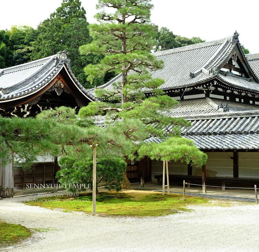 A1000-2021101930-泉涌寺-3000-パノラマ5