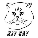 140708_kitcat