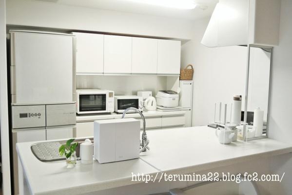 fc2blog_20120701233624f69.jpg