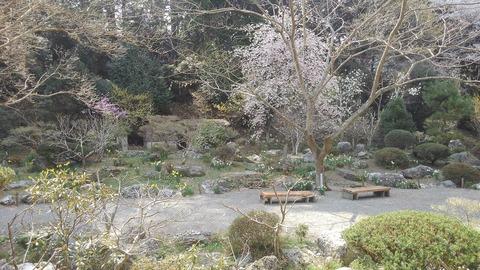 4波瀬植物園2