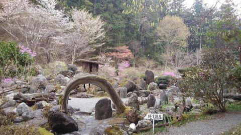 4波瀬植物園