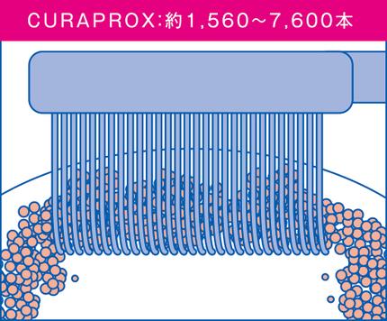 クラプロックス3
