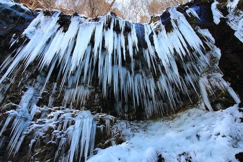 スッカン沢大氷柱群と氷の神殿!(高原山山塊:鹿股川源流をゆく!)