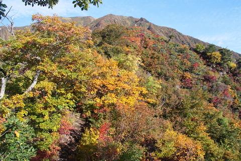 浅草岳(きらり、きらり、光る秋色の山!)(前編)