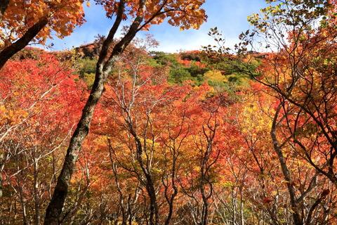 秋色満載、那須のお山を楽しんだ!