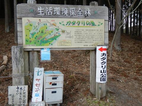カタクリ山(早春の喜連川丘陵、カタクリの若葉と出逢ったプチプチハイク!)