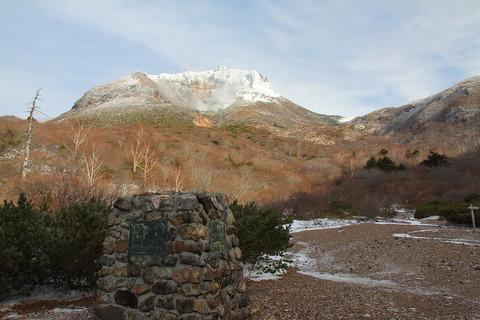 初冬の那須・満開の冬の華を満喫した!