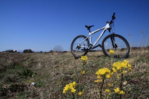 陽春を自転車で楽しみました。(栃木県矢板市・大田原市)